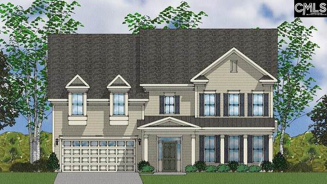 2035 Ludlow Place 166, Chapin, SC 29036 (MLS #498986) :: EXIT Real Estate Consultants