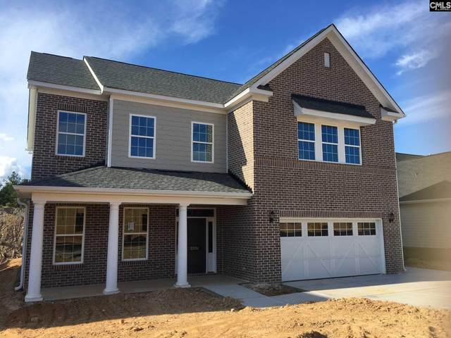2039 Ludlow Place 167, Chapin, SC 29036 (MLS #498987) :: Fabulous Aiken Homes