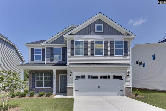 256 Wessinger Farms Road, Chapin, SC 29036 (MLS #499141) :: The Meade Team