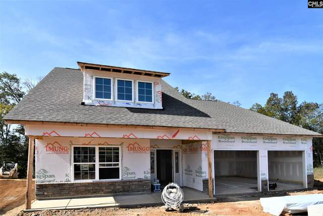 713 Ruskin Drive, Chapin, SC 29036 (MLS #500662) :: The Shumpert Group