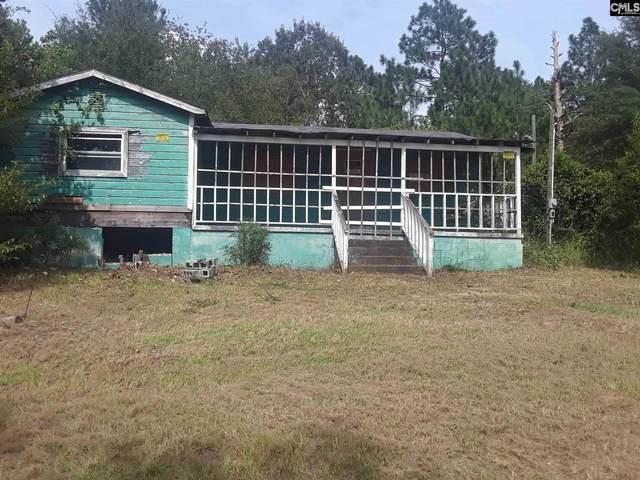 287 Irvin Jumper St., Gaston, SC 29053 (MLS #500739) :: Home Advantage Realty, LLC