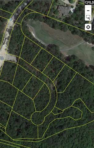 346 E Arrowleaf Drive (Lot 27), Elgin, SC 29045 (MLS #501416) :: Yip Premier Real Estate LLC