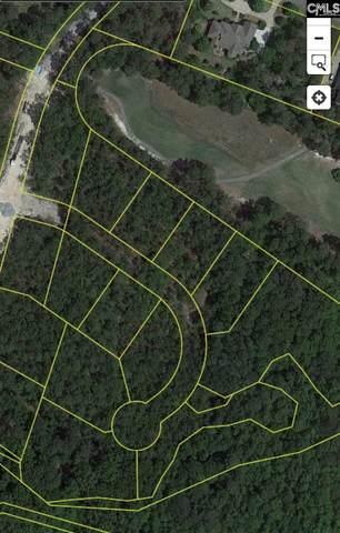 346 E Arrowleaf Drive (Lot 27), Elgin, SC 29045 (MLS #501416) :: The Olivia Cooley Group at Keller Williams Realty