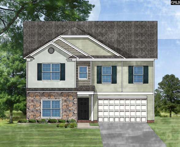 133 Druid Road, Lexington, SC 29072 (MLS #502721) :: Loveless & Yarborough Real Estate