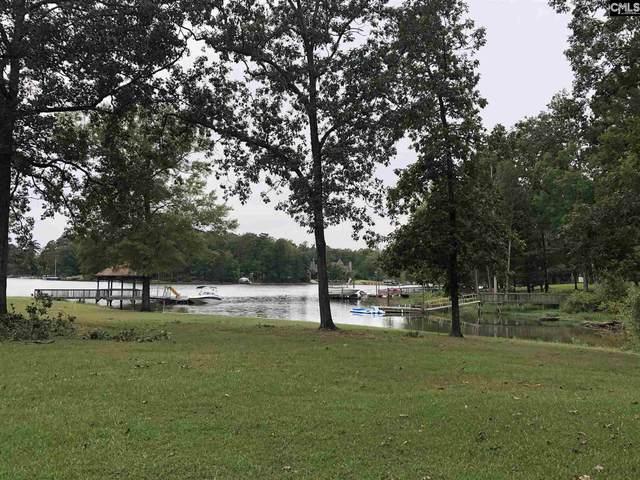 166 Dutchman Shores Circle, Chapin, SC 29036 (MLS #504202) :: Home Advantage Realty, LLC