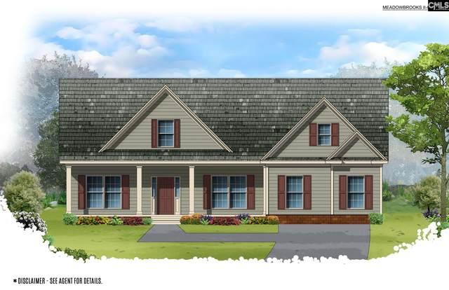306 Jake Meetze Road, Chapin, SC 29036 (MLS #504532) :: Home Advantage Realty, LLC
