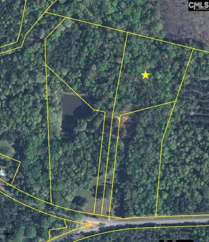 1000 R Stoudemayer Road #3, Little Mountain, SC 29075 (MLS #505611) :: Resource Realty Group