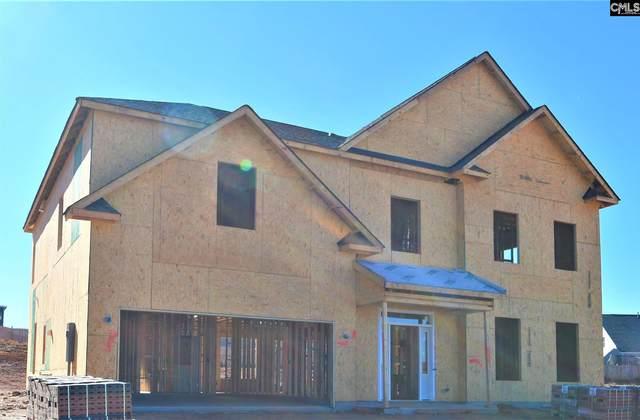 115 Almofini Lane, Chapin, SC 29036 (MLS #505783) :: Resource Realty Group