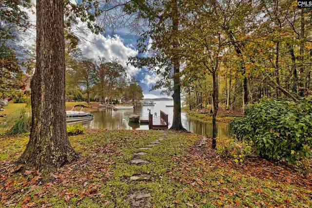 132 Rum Gully Lane, Chapin, SC 29036 (MLS #506220) :: The Meade Team