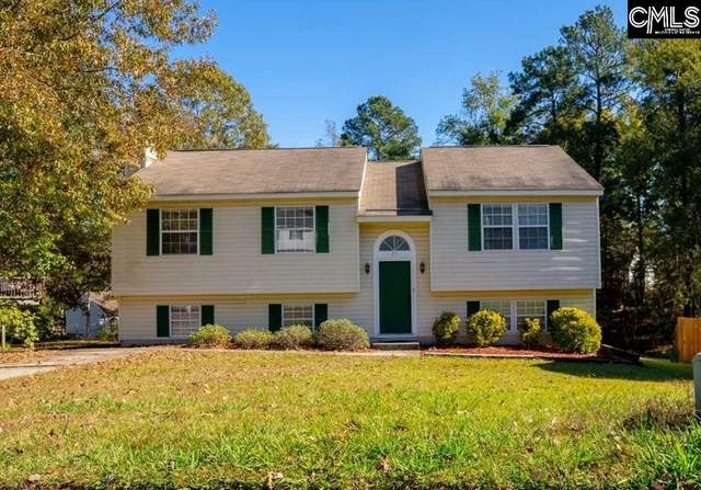 17 Gowham Ct, Irmo, SC 29063 (MLS #506259) :: The Olivia Cooley Group at Keller Williams Realty