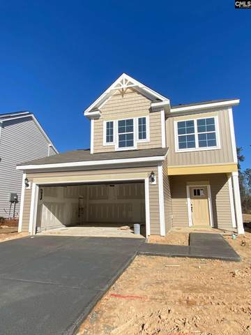 721 South Sage Drop Road, Blythewood, SC 29016 (MLS #506865) :: Loveless & Yarborough Real Estate