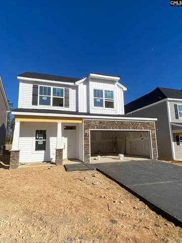 725 South Sage Drop Road, Blythewood, SC 29016 (MLS #507032) :: Loveless & Yarborough Real Estate