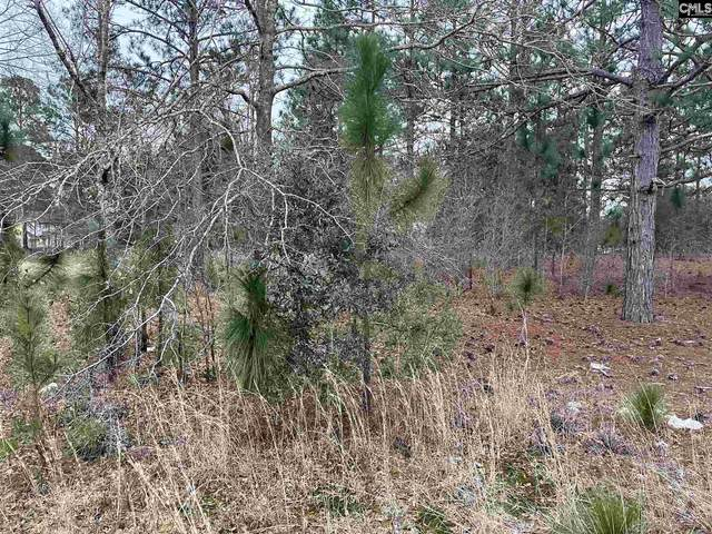 945 Old Stagecoach Drive Parcel 1, Camden, SC 29020 (MLS #509062) :: The Olivia Cooley Group at Keller Williams Realty