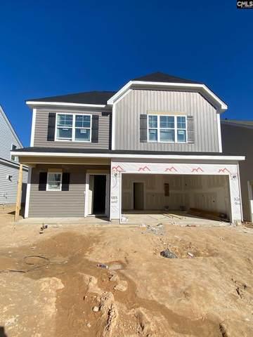 727 South Sage Drop Road, Blythewood, SC 29016 (MLS #509181) :: Loveless & Yarborough Real Estate