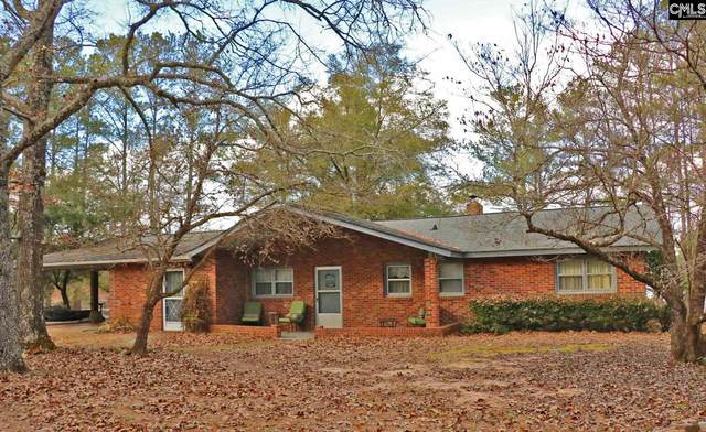 987 Edisto Lake Road, Wagener, SC 29164 (MLS #509306) :: EXIT Real Estate Consultants