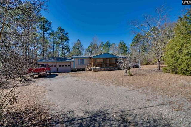 119 Blanton Street, Pelion, SC 29123 (MLS #511620) :: Loveless & Yarborough Real Estate