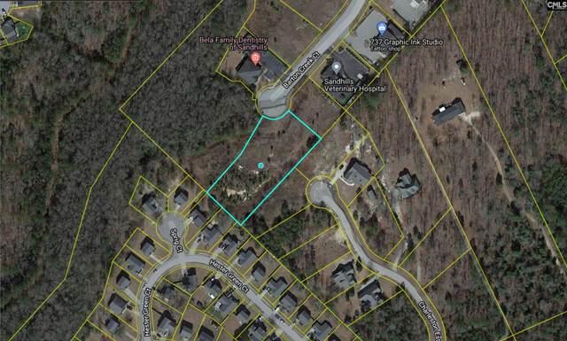 133 Barton Creek Court, Columbia, SC 29229 (MLS #511961) :: EXIT Real Estate Consultants