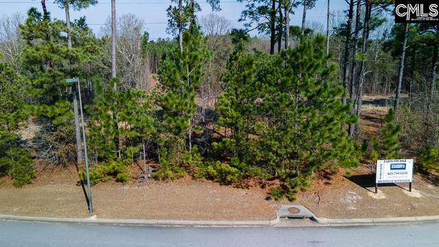 N/S Pinnacle Point Drive D-04, Columbia, SC 29203 (MLS #512664) :: The Meade Team