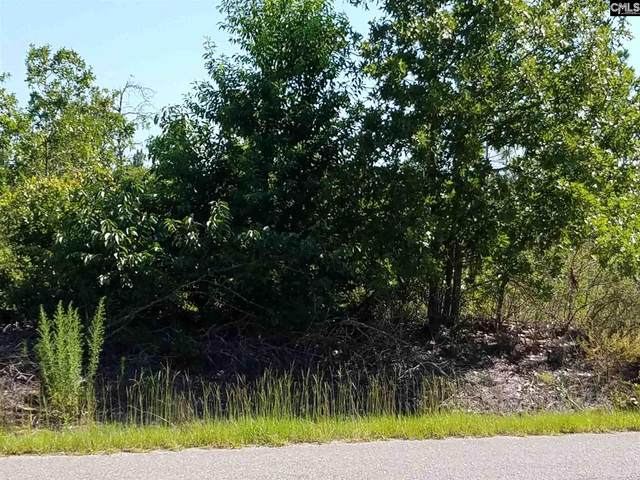 Old Chalk Bed Road #13, Other, SC 29006 (MLS #513724) :: EXIT Real Estate Consultants