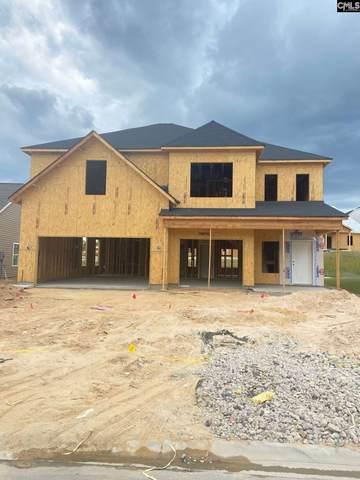 1022 Turtle Stone Road, Blythewood, SC 29016 (MLS #514103) :: Yip Premier Real Estate LLC