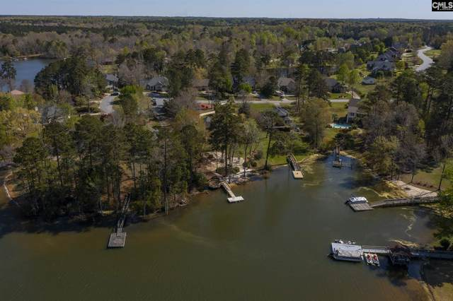 421 Highwater Court, Chapin, SC 29036 (MLS #514445) :: EXIT Real Estate Consultants