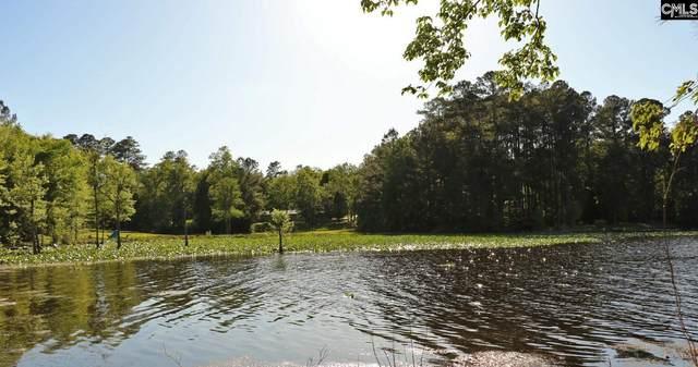 TBD Edisto Lake Road Lot 40, Wagener, SC 29164 (MLS #517006) :: The Shumpert Group