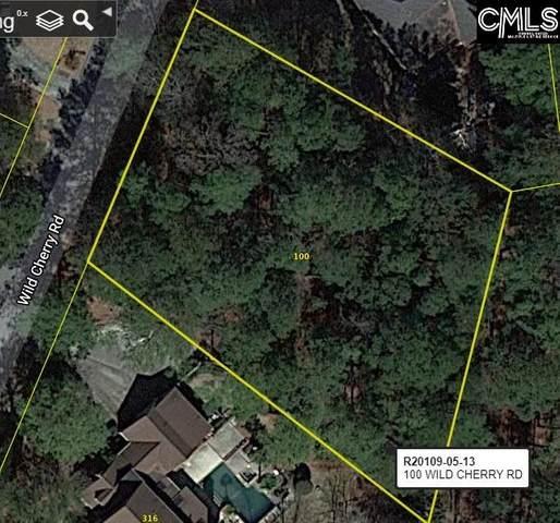 100 Wild Cherry Road, Columbia, SC 29223 (MLS #518021) :: NextHome Specialists