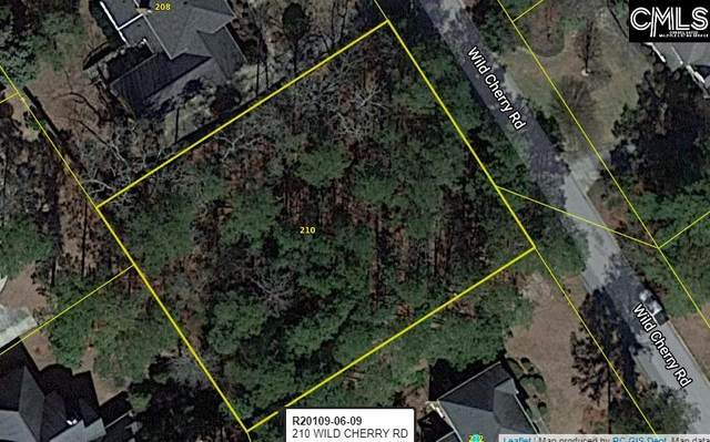 210 Wild Cherry Road, Columbia, SC 29223 (MLS #518481) :: NextHome Specialists