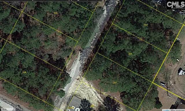 227 Acie Avenue 14-E, Hopkins, SC 29061 (MLS #518486) :: Resource Realty Group