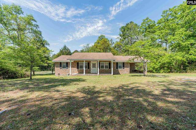 110 Dacus Lane, West Columbia, SC 29170 (MLS #519252) :: The Olivia Cooley Group at Keller Williams Realty