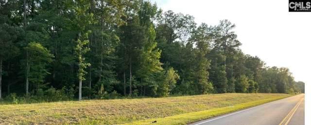 11437 Broad River Road, Chapin, SC 29036 (MLS #519710) :: Fabulous Aiken Homes