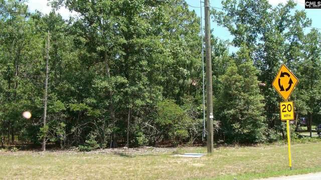 2017 Woodtrail Drive #107, Gaston, SC 29053 (MLS #520155) :: Metro Realty Group