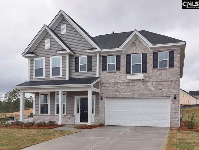 259 Aldergate Drive, Lexington, SC 29073 (MLS #520234) :: EXIT Real Estate Consultants