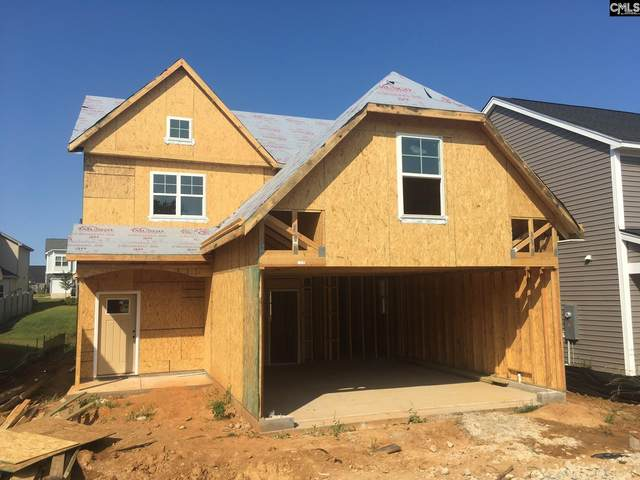 933 Bergenfield Lane 165, Chapin, SC 29063 (MLS #520711) :: EXIT Real Estate Consultants