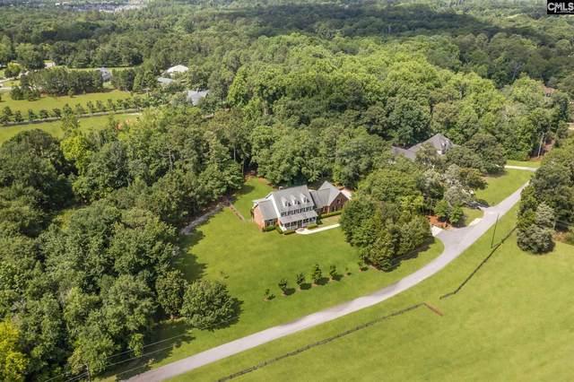 109 Branham View Road, Lexington, SC 29072 (MLS #521031) :: The Olivia Cooley Group at Keller Williams Realty