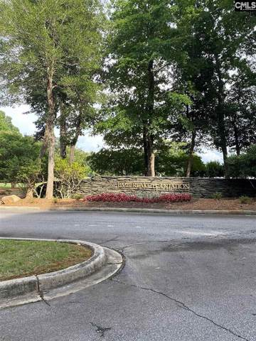404 Lookover Pointe Drive #35, Chapin, SC 29036 (MLS #521706) :: Loveless & Yarborough Real Estate