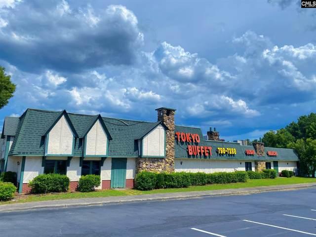 109 Woodland Hill Road, Columbia, SC 29210 (MLS #522061) :: Home Advantage Realty, LLC