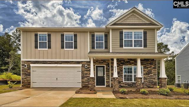 457 Stone Hollow Drive, Irmo, SC 29063 (MLS #522676) :: The Olivia Cooley Group at Keller Williams Realty