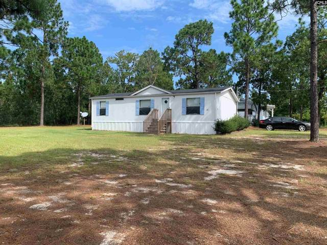 140 Dowd Dr, Gaston, SC 29053 (MLS #523685) :: Resource Realty Group