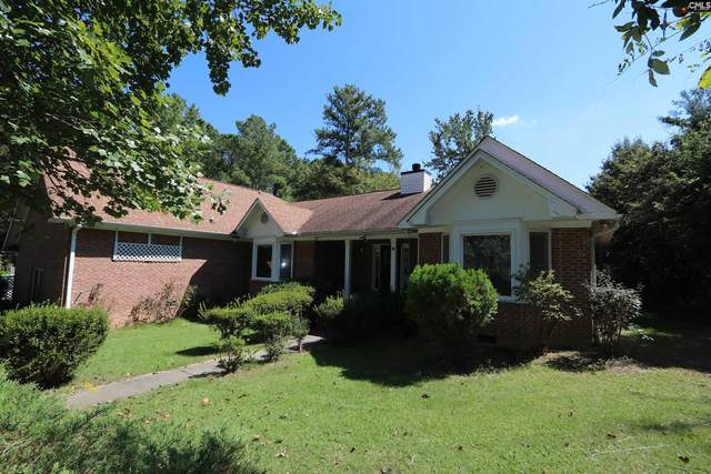 1716 Hollingshed Road, Irmo, SC 29063 (MLS #525607) :: Metro Realty Group