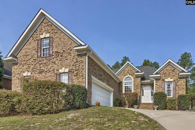 254 Polo Hill Road, Columbia, SC 29223 (MLS #526596) :: The Latimore Group