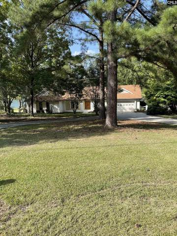 112 Killian Point Circle, Chapin, SC 29036 (MLS #527690) :: EXIT Real Estate Consultants