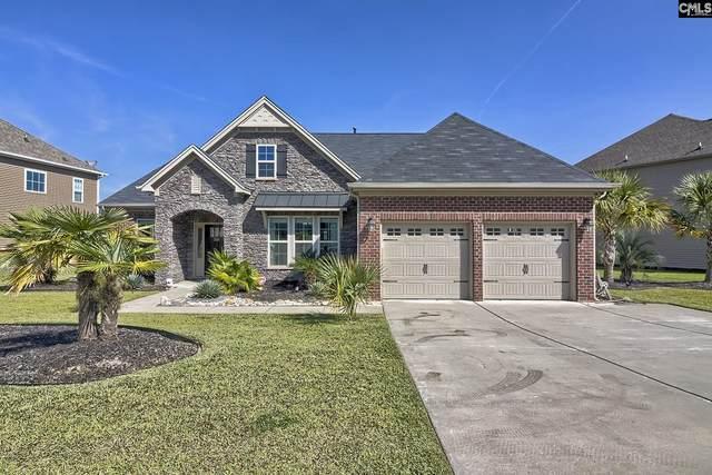 319 Montrose Drive, Lexington, SC 29072 (MLS #527976) :: Resource Realty Group