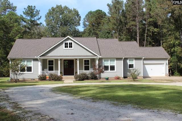 1149 Pet Sites Road, Chapin, SC 29036 (MLS #528129) :: Loveless & Yarborough Real Estate