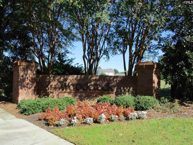 326 Carola Lane, Lexington, SC 29072 (MLS #528179) :: Resource Realty Group