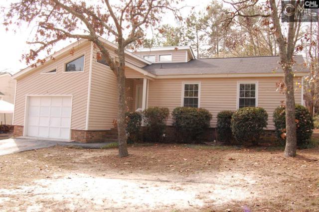 846 Old Orangeburg Road, Lexington, SC 29073 (MLS #418702) :: Exit Real Estate Consultants