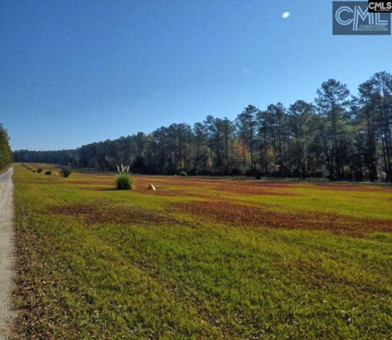 407 Swift Creek Road, Rembert, SC 29128 (MLS #425575) :: EXIT Real Estate Consultants