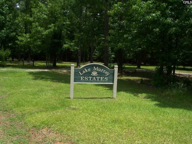 118 Scooter Bridge Road Lot 36, Batesburg, SC 29006 (MLS #428024) :: Home Advantage Realty, LLC