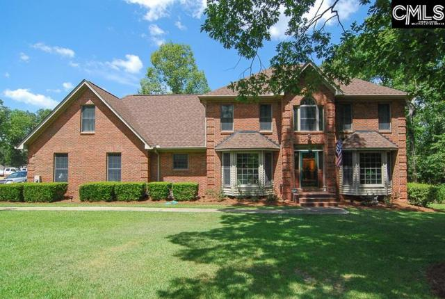 414 Camping Creek Court, Chapin, SC 29036 (MLS #429654) :: EXIT Real Estate Consultants