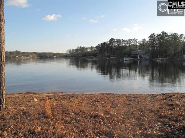 628 Panorama Point, Lexington, SC 29072 (MLS #430233) :: EXIT Real Estate Consultants